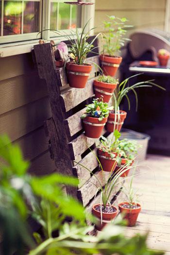 Balkon-Garten. (4/4)
