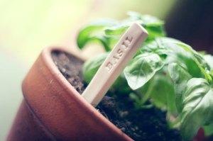 DIY_garden_markers1