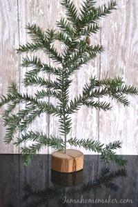 Totally-free-tiny-tree-682x1024