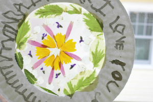 Flower-Suncatchers-in-a-Paper-Plate-Frame